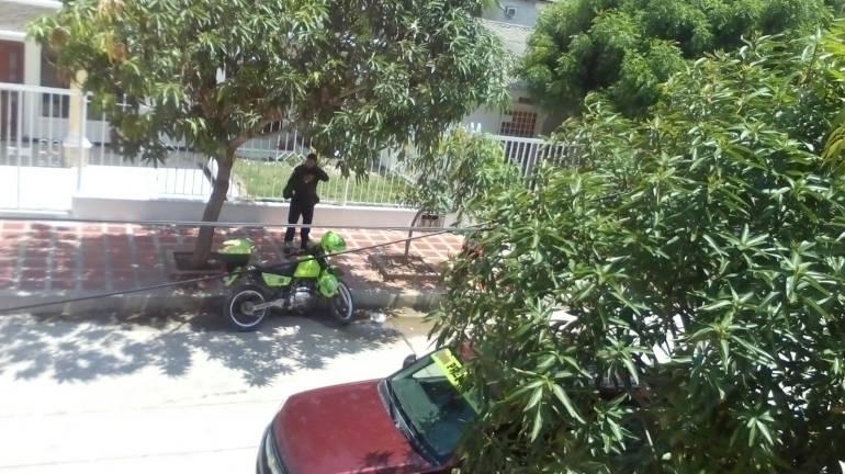 Sector del barrio Las Mercedes atacado por las abejas