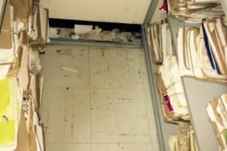 Alertan de proliferación de roedores en Juzgados Laborales de Cartagena