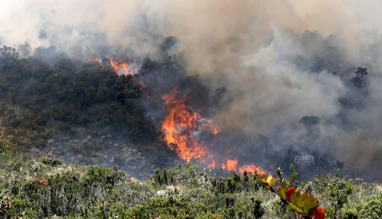 Tragedia ambiental por incendio forestal en límites entre Boyacá y Casanare: Tragedia ambiental por incendio forestal en límites entre Boyacá y Casanare