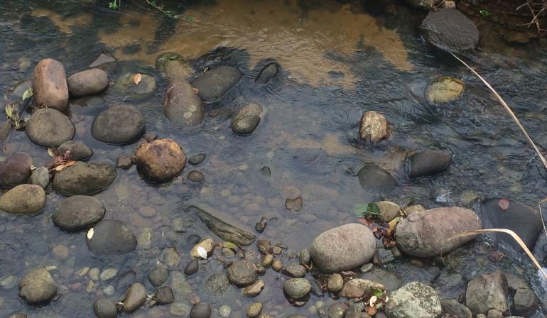 Cúcuta Petróleo derrame zona Catatumbo Norte de Santander: Válvula ilegal genera derrame de petróleo en la zona del Catatumbo de Norte de Santander