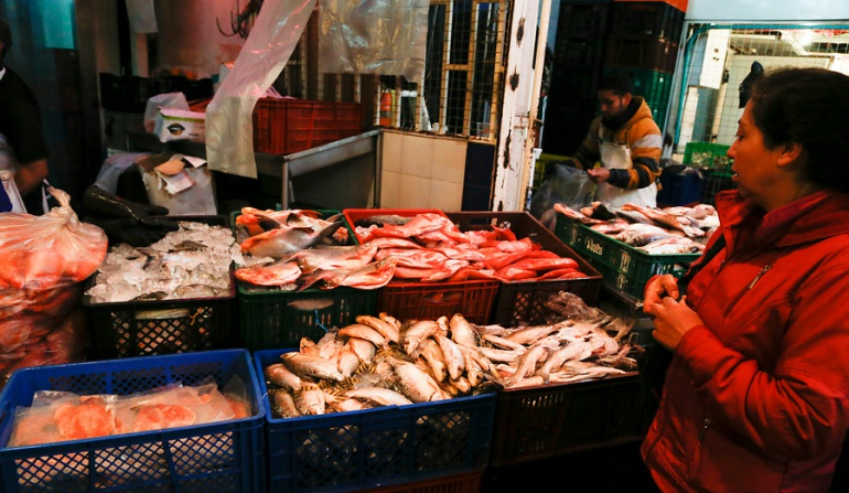 ¿Se pueden comer los peces que están apareciendo muertos en el Río Magdalena?: ¿Se pueden comer los peces que están apareciendo muertos en el Río Magdalena?