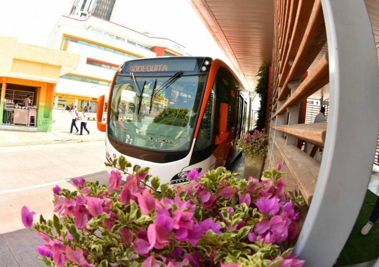 jardines verticales estaciones Transporte Masivo: Cartagena, pionera en jardines verticales en estaciones de Sistema de Transporte Masivo
