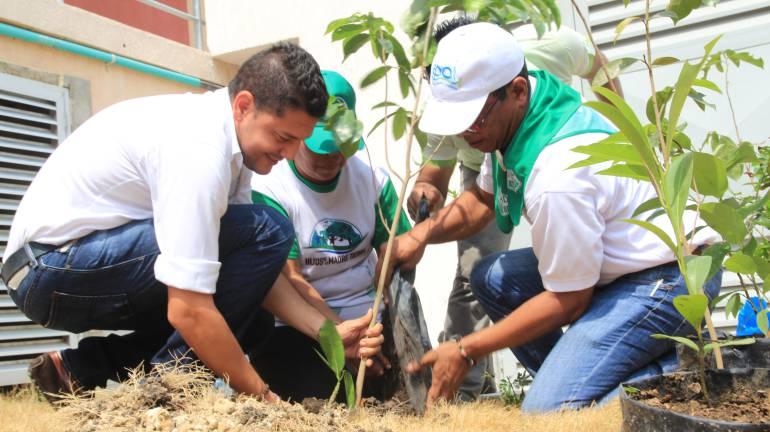 Siembran 250 árboles en celebración del Día de la Tierra de Cartagena