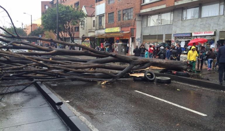 Arbol cayó en plena Avenida Caracas