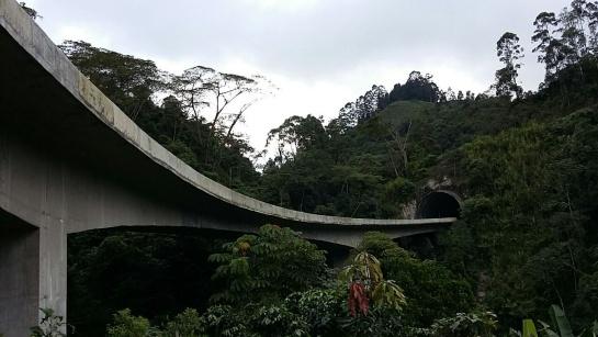 Algunos viaductos dan directamente a los túneles.