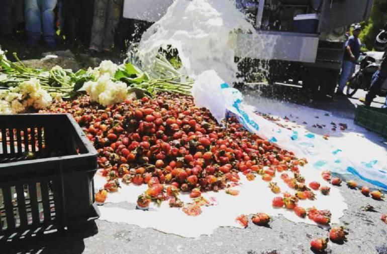 Frutas: Marcha de cultivadores de frutas afectados por paro
