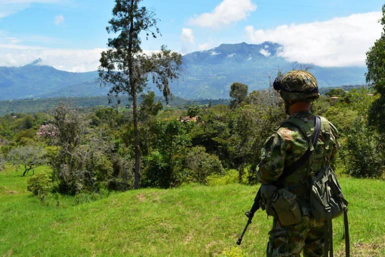 Colombia celebra cese al fuego definitivo decretado por FARC — ENFOQUE