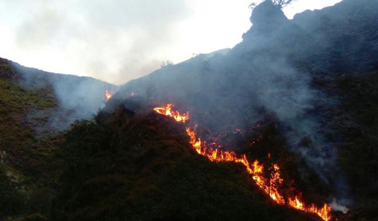 Incendios han destruido más de 200 hectáreas de flora y fauna en Boyacá: Incendios han destruido más de 200 hectáreas de flora y fauna en Boyacá