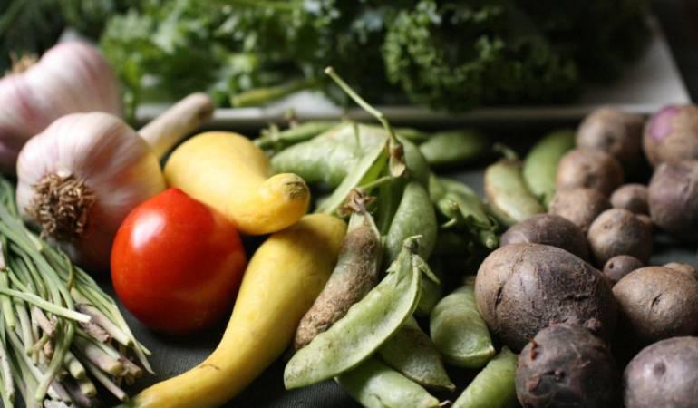Italia Boyacá: Italia y Emiratos Árabes con los ojos puestos en la agricultura boyacense