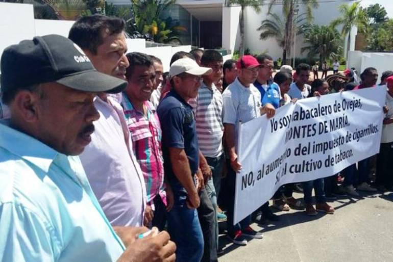 Tabacaleros de montes de mar a protestaron en cartagena - Reformas en cartagena ...