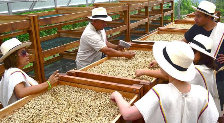 Ya están comprando la carga de café por encima del millón de pesos en todo el país