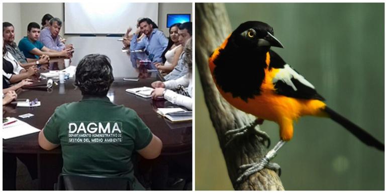 Se creó Mesa de Turismo de Naturaleza del Valle del Cauca: U. Autónoma lideró proyecto para fomentar turismo de naturaleza en el Valle
