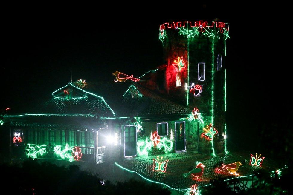Como centro la iluminación se trata de un homenaje a la fauna y flora local.