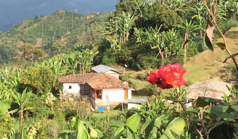 Casas típicas como esta son adecuadas para los turistas.