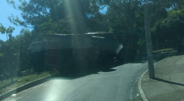 SEMOVIENTES EN FUGA: Buscan vacas que se dieron a la fuga, después de un accidente en Medellín