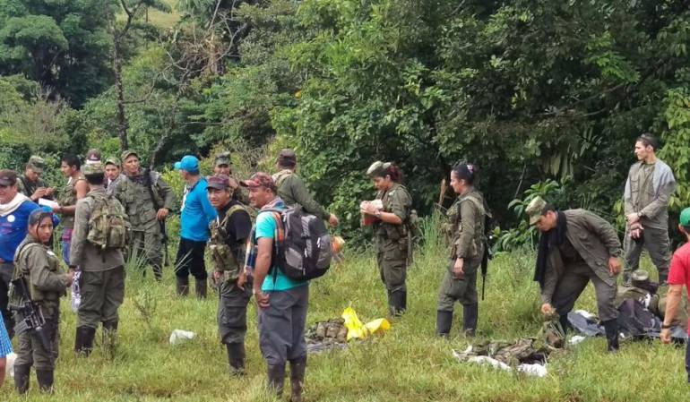 Imágenes del desplazamiento de las tropas de las FARC hacia las zonas veredales de normalización,