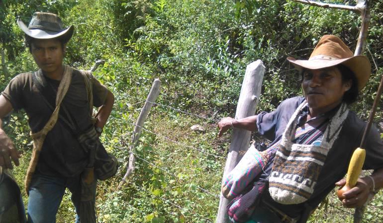 Investigan causa de muerte de nueve indígenas en la Sierra Nevada