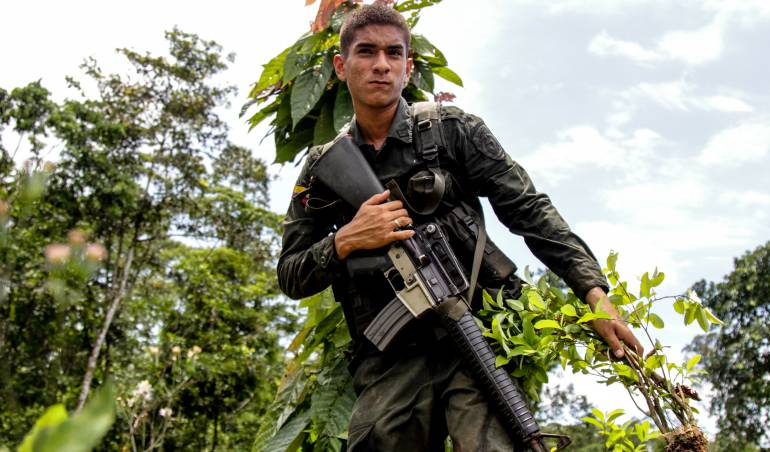 Cocaleros liberan 11 policías que mantenían retenidos en Nariño