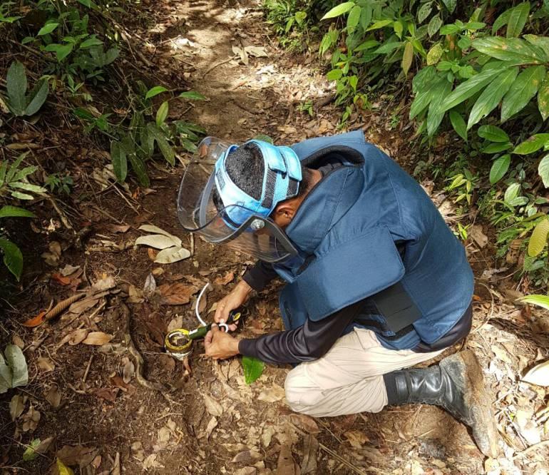Ingenieros del Batallón de Desminado trabajan en la desactivación de minas antipersonal en el oriente de Caldas.