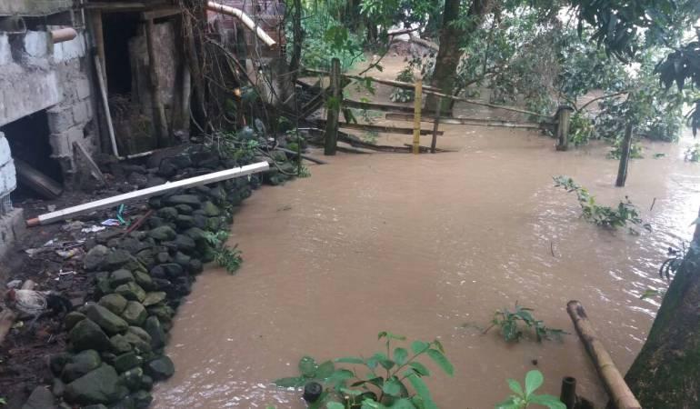 invierno; río Cauca; palestina; Caldas; Manizales: Evacuación preventiva de 35 familias en Caldas por posible empalizada del río Cauca
