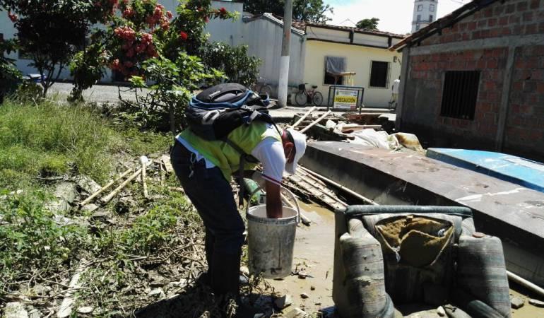 Secretaría de Salud controla las plagas y enfermedades entre los damnificados