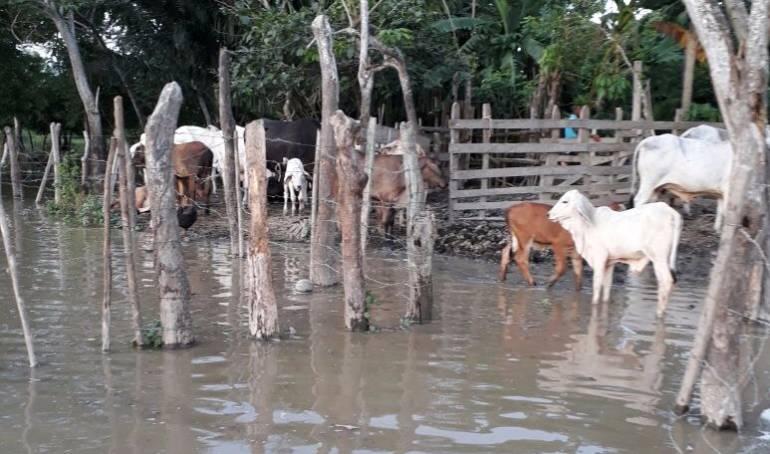Inundaciones en Sucre