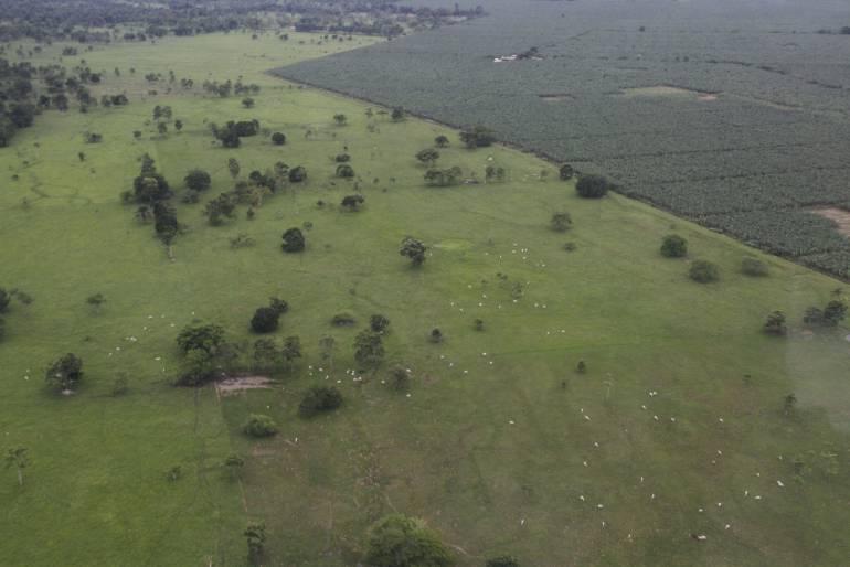 Gobierno reitera que Bajirá está dentro de los límites de Chocó