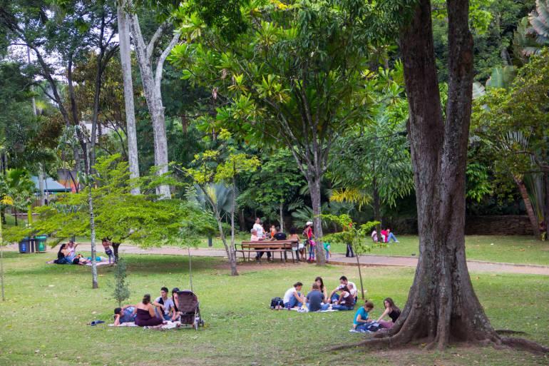 Medellín se une a celebración mundial por el medio ambiente
