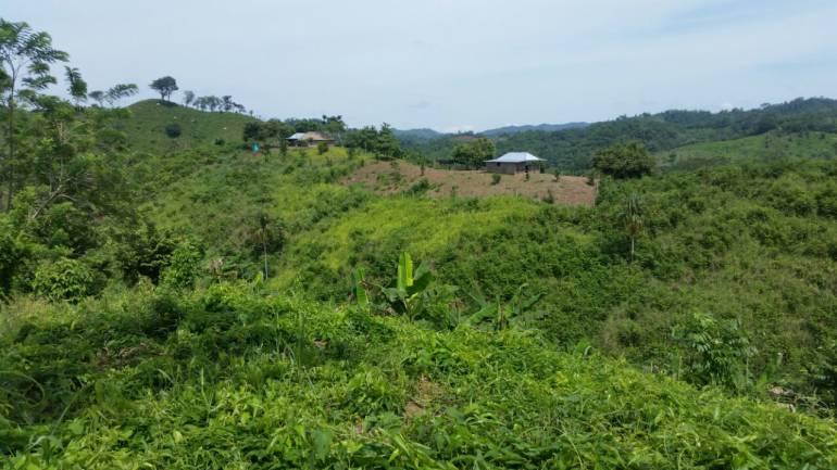 Entregan 150 hectáreas de tierra a víctimas de paramilitares en Bolívar