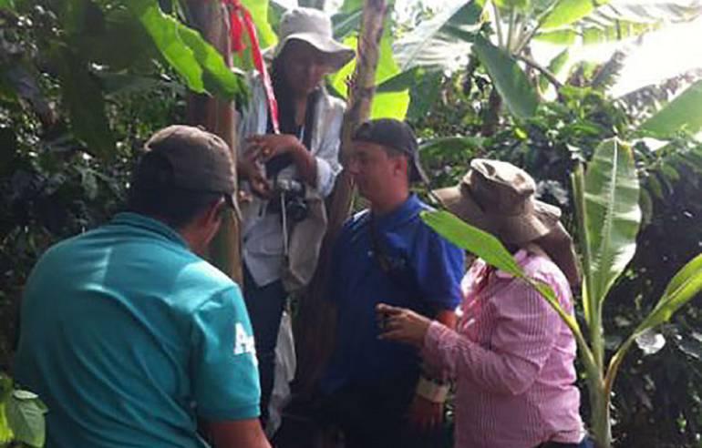 Investigadora de la Universidad Nacional de Palmira desarrolló proyecto para mejorar suelos cultivados con plátano
