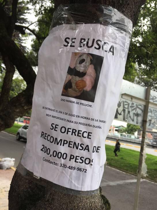 Ofrecen recompensa en Bogotá por un panda de peluche: Momo, el panda de peluche por el que ofrecen recompensa en Bogotá