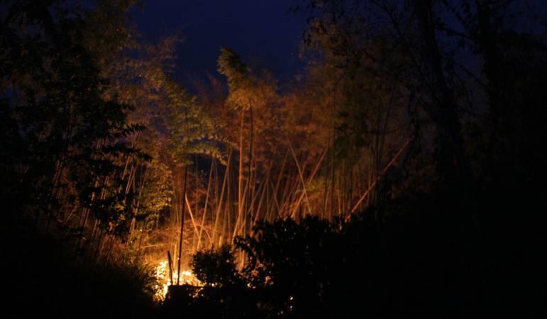 Incendios forestales en Nariño: Alerta roja en nueve municipios de Nariño por incendios forestales