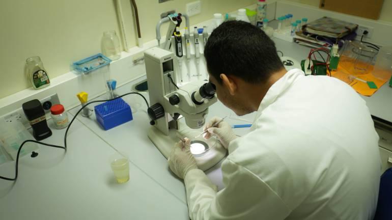 Programa de medicina de Unicartagena renovó acreditación de alta calidad
