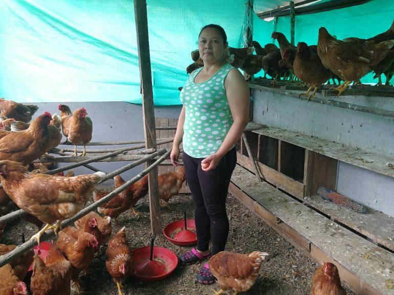 Siembra Futuro, el nuevo programa que beneficiara a los campesinos del occidente de Antioquia.