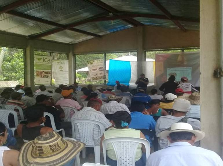 ICA realiza capacitación a productores agrícolas en Montes de María: ICA realiza capacitación a productores agrícolas en Montes de María
