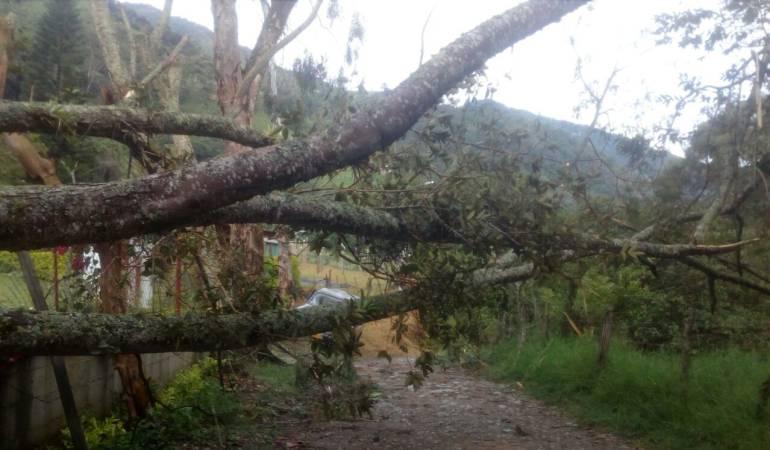 Lluvias provocan emergencias en Ibagué