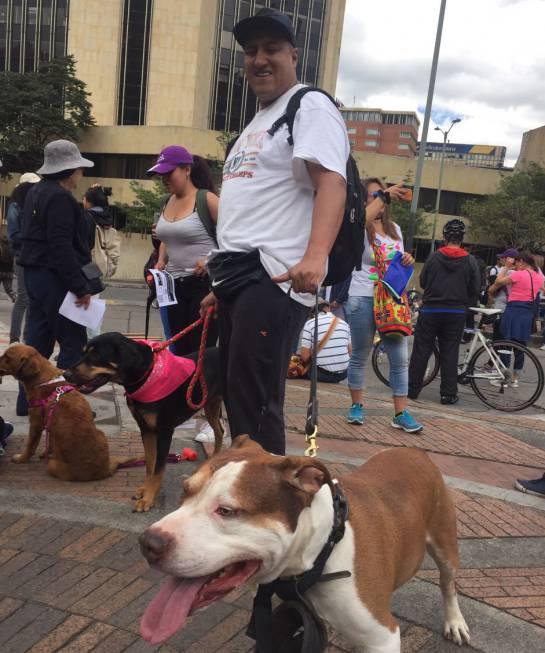 marcha a favor de los animales en Bogotá: Así fue la marcha por los derechos de los animales en Bogotá