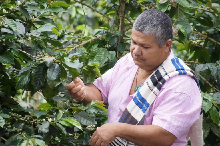 Restitución de tierras: Víctimas restituidas de Valle, han recibido más de $5.000 millones para proyectos