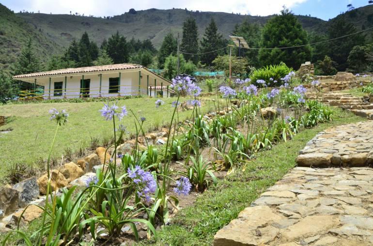 Mujeres de Medellín celebrarán la importancia de su labor en el campo