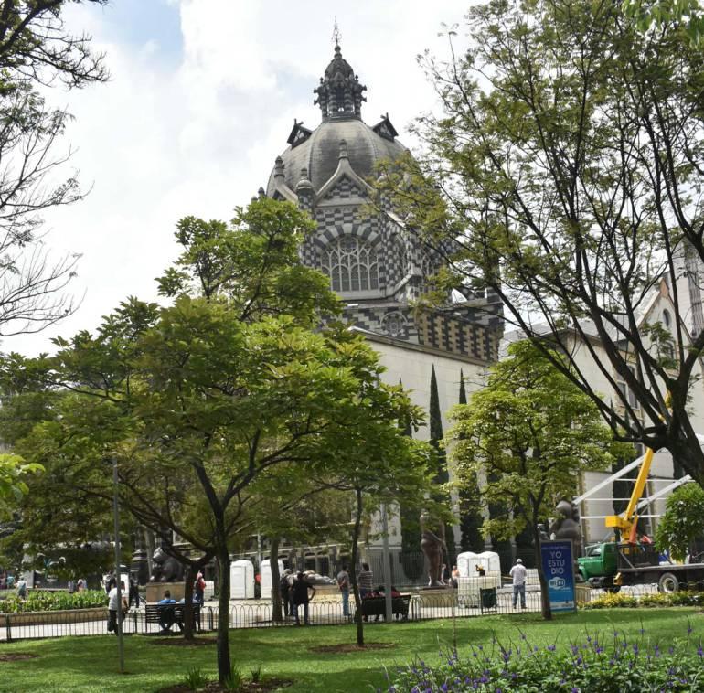 Medio ambiente: En Medellín son sembrados, semanalmente, 200 árboles