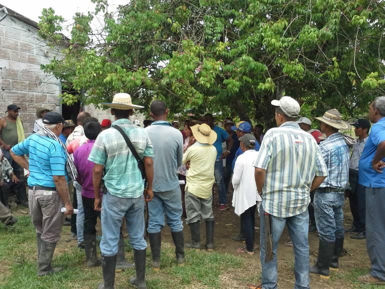 Asesinan a líder de sustitución de cultivos en Antioquia