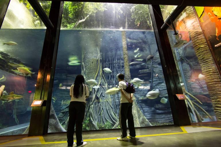 En Medellín se dialogará sobre la importancia de los museos
