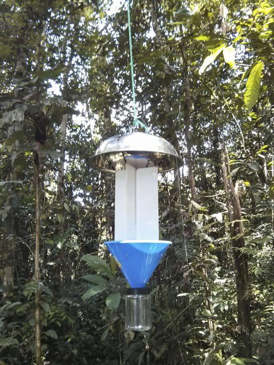 Trampa de luz diseñada por los investigadores de la Universidad del Valle.