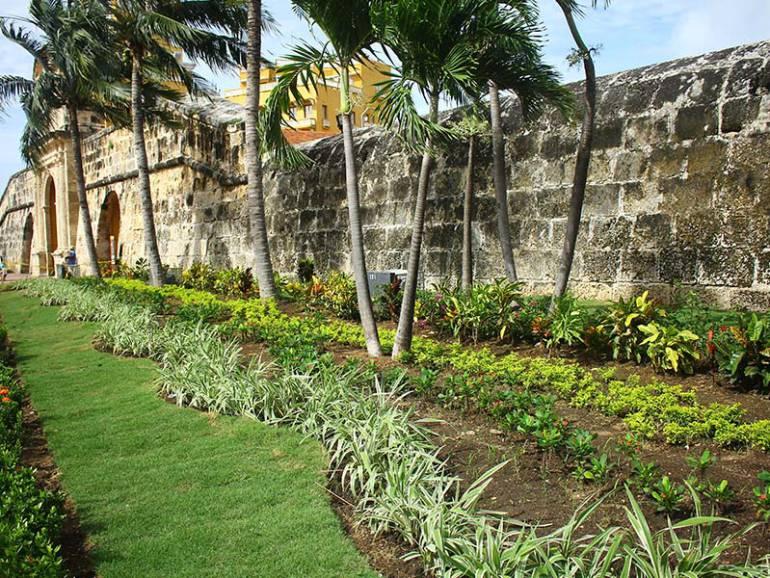 Finaliza revitalización de jardines en Plaza de la Paz de Cartagena: Finaliza revitalización de jardines en Plaza de la Paz de Cartagena