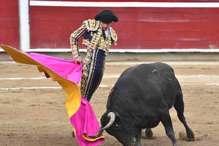 Juez de tutela negó la posibilidad de realizar corridas de toros en Cartagena: Juez de tutela negó la posibilidad de realizar corridas de toros en Cartagena