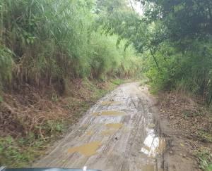 Así está la carretera de la vereda Cañaveral del municipio de Pijao, Quindío