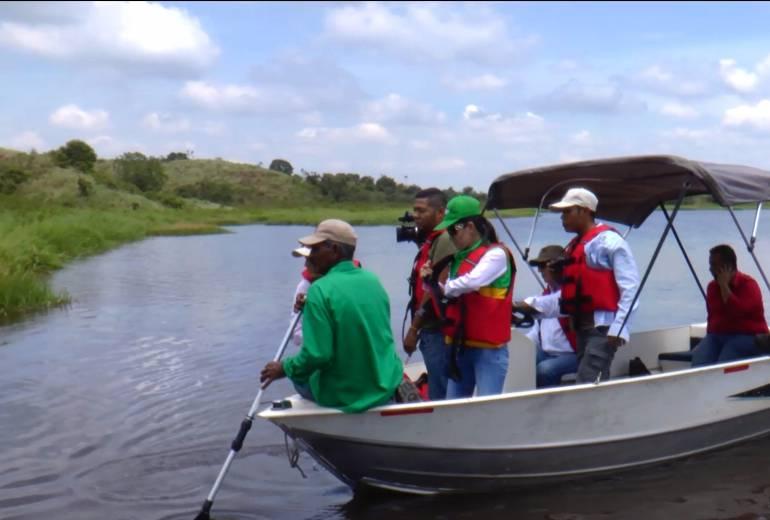 Investigan muerte de manatí en la Ciénaga El Llanito en Barrancabermeja: Investigan muerte de manatí en la Ciénaga El Llanito en Barrancabermeja