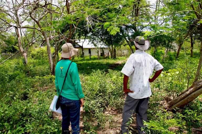 Nuevas sentencias de restitución de tierras en San Jacinto Bolívar: Nuevas sentencias de restitución de tierras en San Jacinto Bolívar