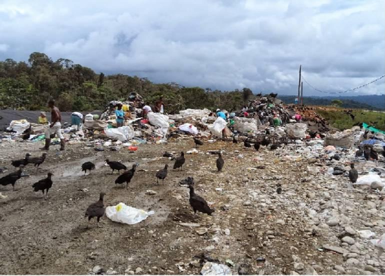Emergencia sanitaria en Buenaventura: Procuraduría advierte emergencia sanitaria en Buenaventura