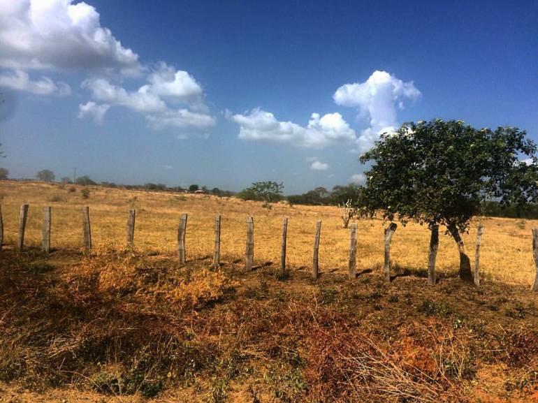 Sequía amenaza abastecimiento de agua en doce municipios de Bolívar: Sequía amenaza abastecimiento de agua en doce municipios de Bolívar
